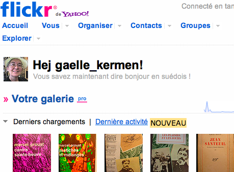 Flickr pro galerie