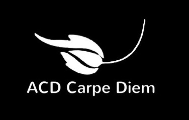 LOgo-ACD-rect